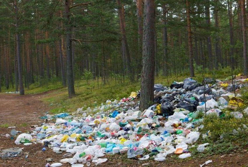Samedi 21 septembre,deuxième édition de la journée mondiale de ramassage des déchets : le World CleanUp Day.