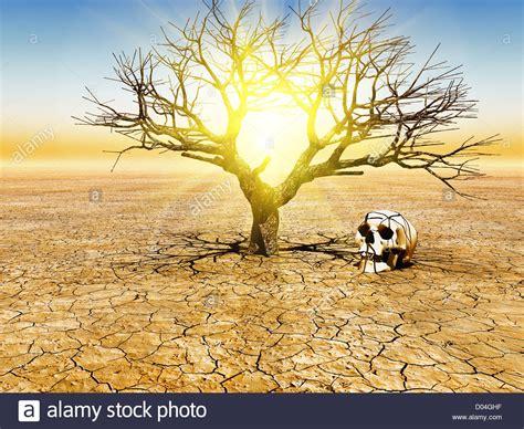 3,5milliards de personnes pourraient vivre dans des conditions climatiques quasi invivables d'ici à 50 ans
